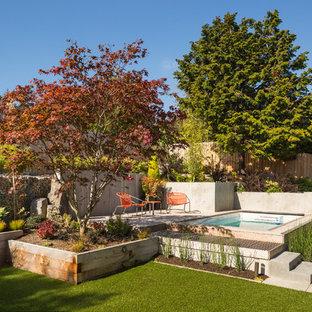 Imagen de piscina elevada, retro, grande, rectangular, en patio trasero, con losas de hormigón
