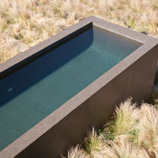 Contemporary Pool by WA design