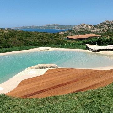 Biodesign Natural Pond Pools