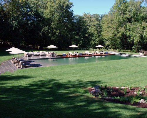 Bionova Natural Swimming Pool Danbury Ct