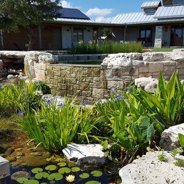 BioNova Natural Swimming Pool - Austin, TX