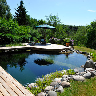Photo of a mid-sized scandinavian backyard custom-shaped natural pool in Other with natural stone pavers.