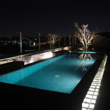 Modern Pool by Agape Tile LLC