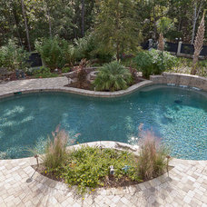 Traditional Pool by Blue Haven Pools & Spas - Charleston