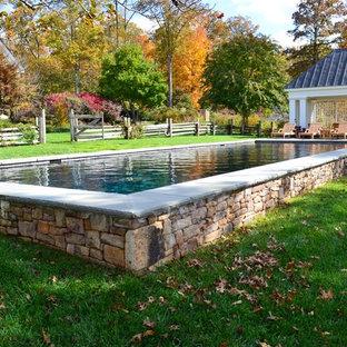 Imagen de casa de la piscina y piscina alargada, campestre, grande, rectangular, en patio trasero