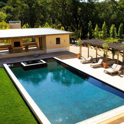 Mediterranean Pool by BraytonHughes Design Studios