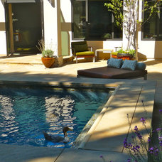 Midcentury Pool by Susan Jay Design