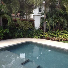 Modern Pool by ecopacheco
