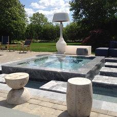 Modern Pool by Patricks Pools