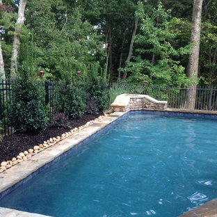 Design ideas for a small arts and crafts backyard custom-shaped natural pool in Atlanta with a hot tub and decking.