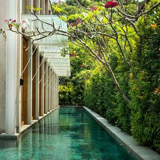 Diseño de piscina alargada, exótica, grande, rectangular, en patio lateral, con losas de hormigón