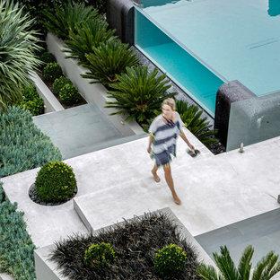 Imagen de piscina elevada, actual, en patio delantero, con losas de hormigón