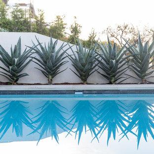 ロサンゼルスのトランジショナルスタイルのおしゃれなプールの写真