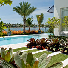 Tropical Pool Captain's Quarters - Port Royal Residence Transformation
