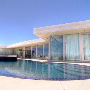Foto de piscinas y jacuzzis infinitos, modernos, de tamaño medio, tipo riñón, en patio trasero