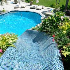 Tropical Pool by DeMaria Landtech Inc