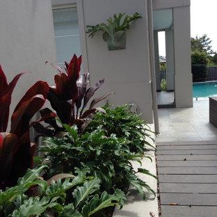 Imagen de casa de la piscina y piscina alargada, industrial, grande, rectangular, en patio trasero, con adoquines de piedra natural