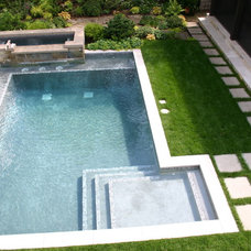 Contemporary Pool by Phillips Garden