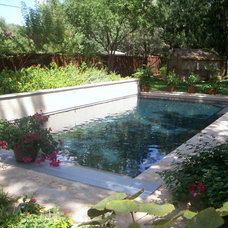 Traditional Pool by Classic Pools, Inc