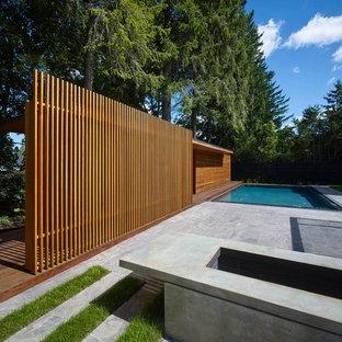 Modelo de casa de la piscina y piscina elevada, minimalista, grande, rectangular, en patio trasero, con losas de hormigón