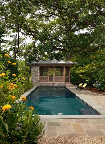 Contemporary Swimming Pool by Cunningham | Quill Architects