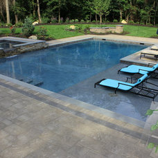 Traditional Pool by Platinum Site Development