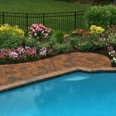 Traditional Pool by Merrifield Garden Center