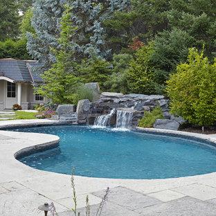 Ejemplo de piscina clásica, tipo riñón, en patio trasero