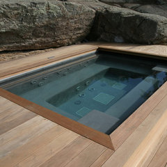 eclectic pool by Aquatic Consultants, Inc
