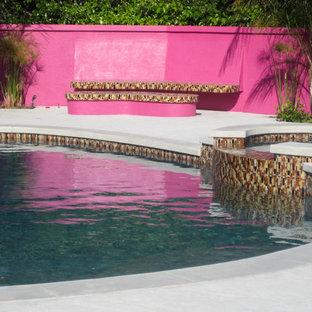Ejemplo de piscinas y jacuzzis naturales, contemporáneos, grandes, a medida, en patio trasero, con suelo de hormigón estampado