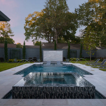 Contemporary Pool and Spa