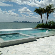 Tropical Pool Contemporary Pool