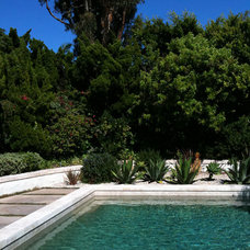 Contemporary Pool by Moss Yaw Design studio