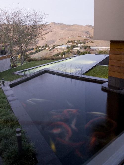 Fish pond home design ideas renovations photos for Koi pond next to pool