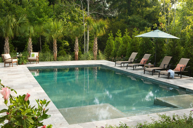 Traditional Pool by Tongue & Groove Design+Build By Mark Batson