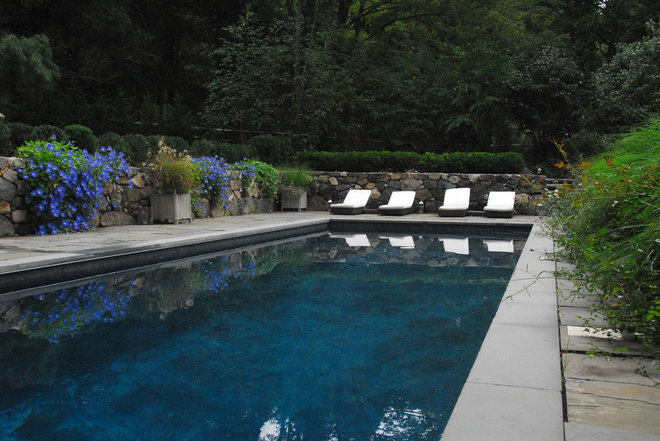 Contemporary Pool by interieurs by Francine Gardner