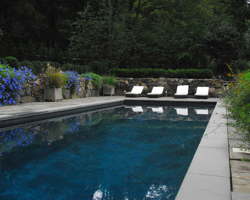 gunite pools photos