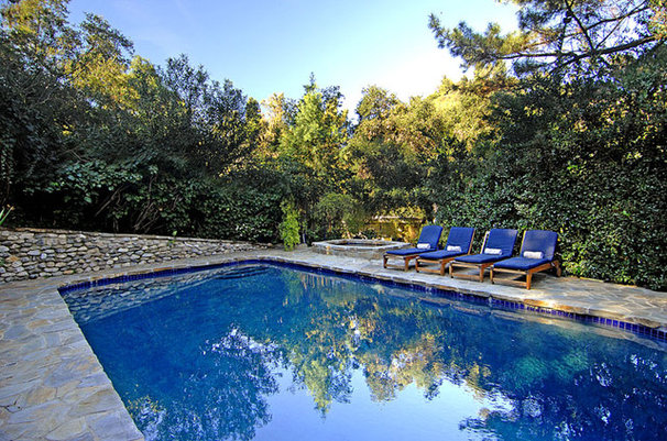 Contemporary Pool by Mark Dodge Design
