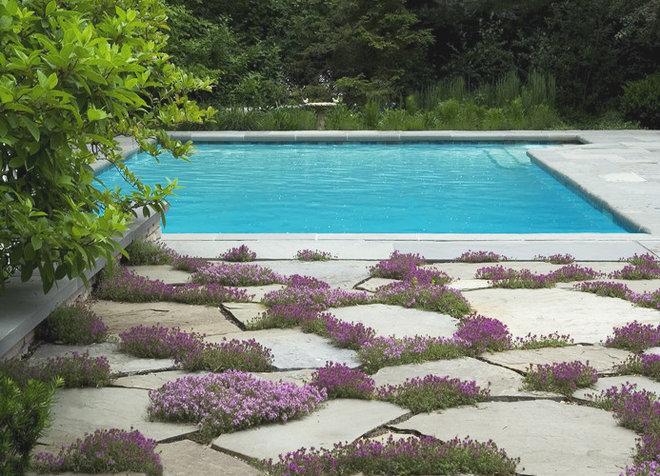 Бассейн by The Garden Consultants, Inc.