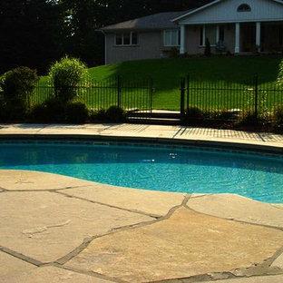 Modelo de piscina tradicional, de tamaño medio, tipo riñón, en patio trasero, con adoquines de hormigón