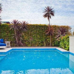 Foto de piscina alargada, actual, pequeña, rectangular, en patio trasero, con privacidad y suelo de baldosas