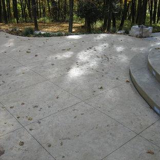 シーダーラピッズの大きい長方形トランジショナルスタイルのおしゃれなプール (コンクリート敷き) の写真