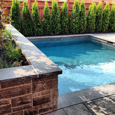 Traditional Pool by Fine Design Living