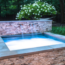 Modern Pool by Cipriano Landscape Design & Custom Swimming Pools