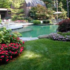 Traditional Pool by Great Oaks Landscape Associates Inc.