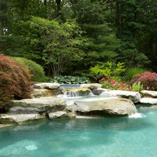 traditional pool by Great Oaks Landscape Associates Inc.