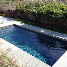 Traditional Pool by Sean Jancski Landscape Architects LLC