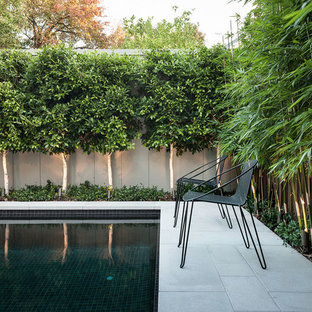 This is an example of a contemporary swimming pool in Melbourne with stamped concrete.