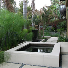 Contemporary Pool by debora carl landscape design