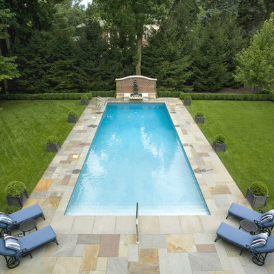 Inspiration for a timeless backyard rectangular pool remodel in Chicago